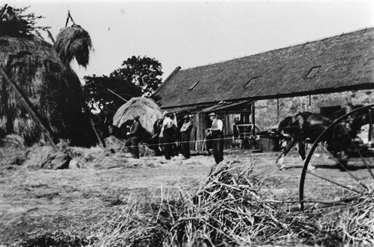 Photo:Farmworkers bringing in the hay, c. 1920s?  If you recognise the farm, let us know.